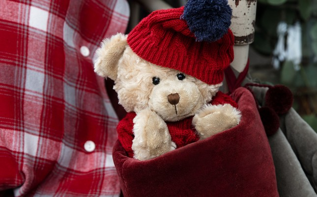 Holiday Teddy, Red/Blue