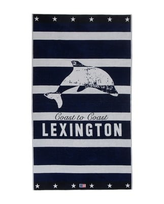 Graphic Velour Beach Towel 100x180, Blue/White