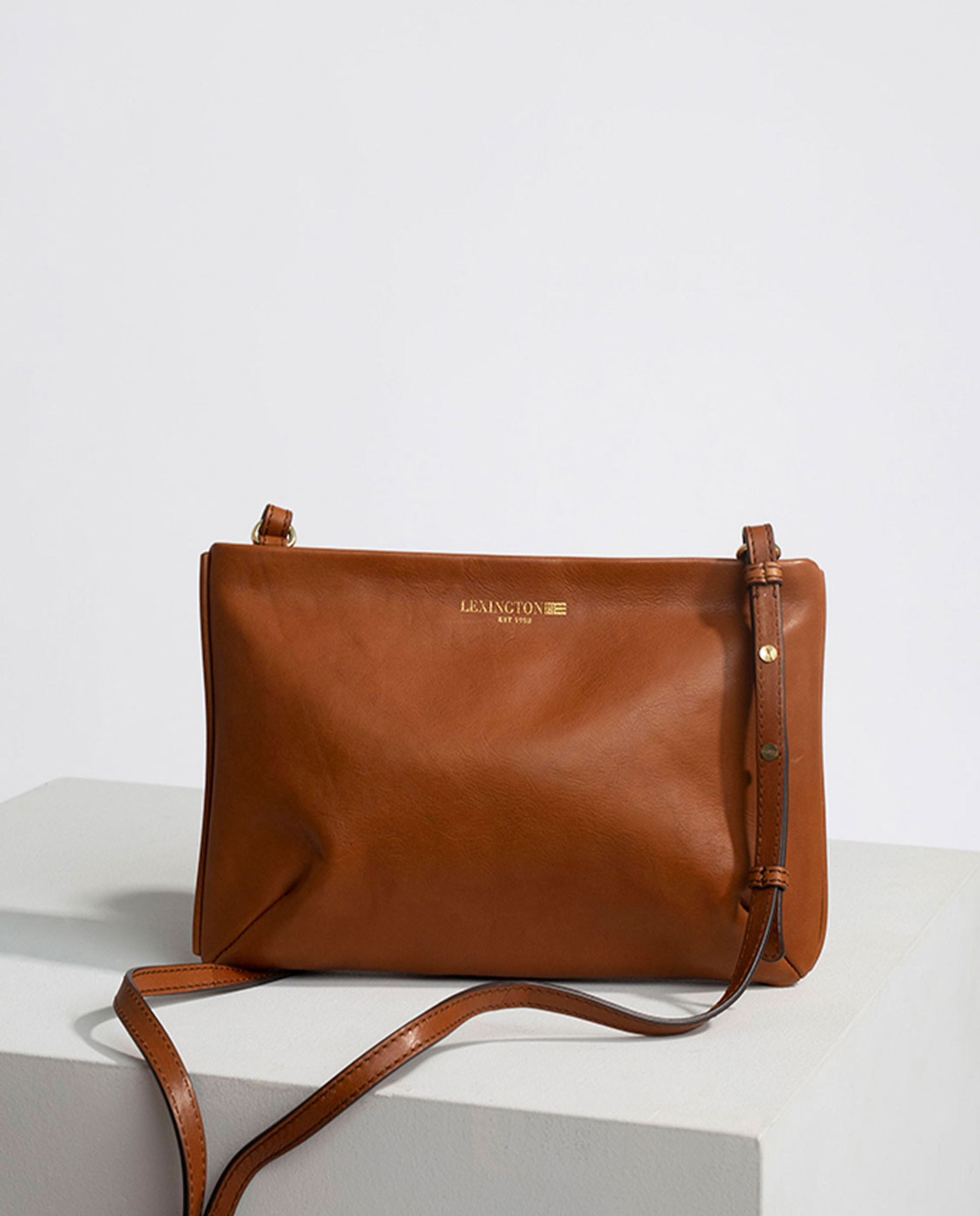 Trudy Premium Leather Zip Bag, Brown