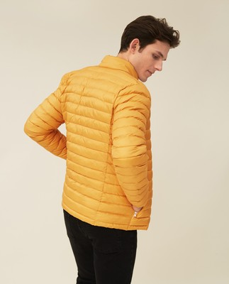 Ted Jacket, Yellow