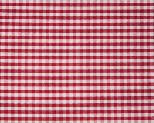 Seaside Check Duvet, Red/White