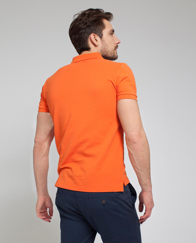 Oscar Polo, Koi Orange